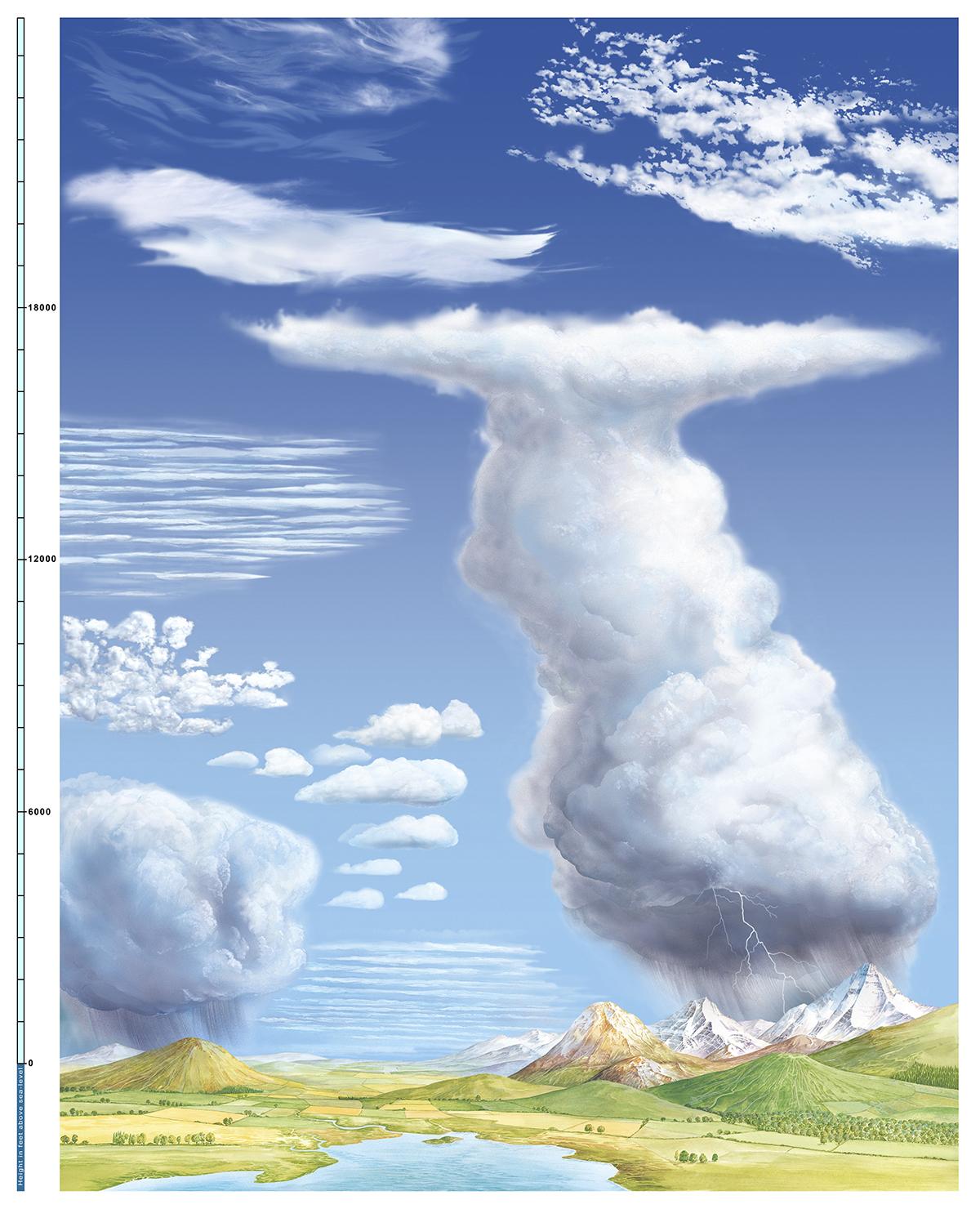 Bulut türleri