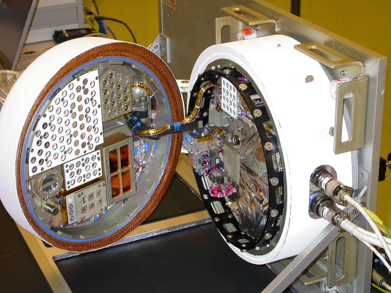 foton m3 uzay aracı biopan deney düzeneği su ayıları tardigradlar