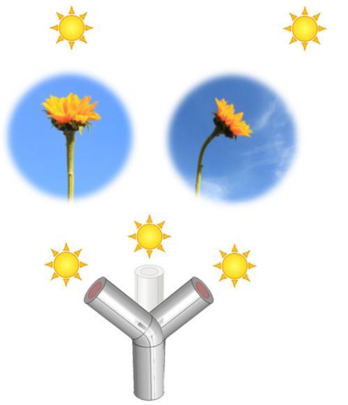 Güneş'i Takip Eden Malzeme