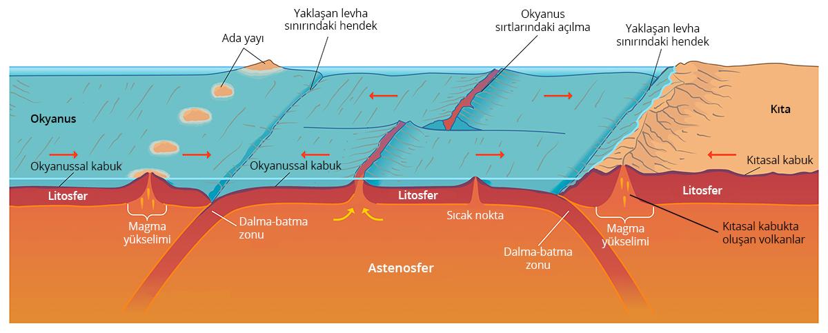 Volkanların oluşumda plaka tektoniği etkilidir.