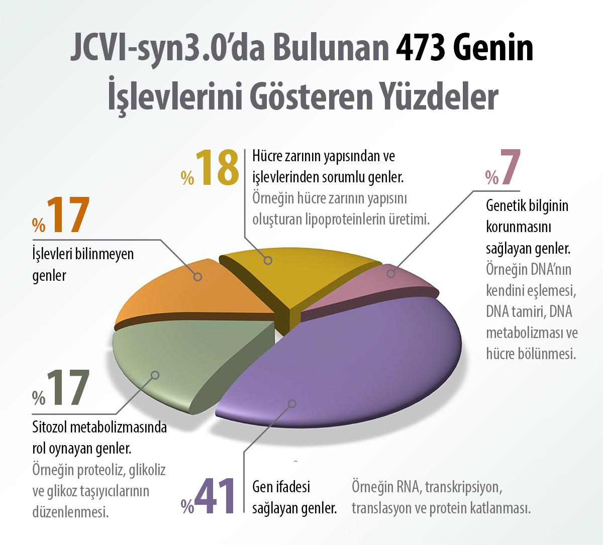 JCVI-syn3.0'da bulunan 473 genin işlevleri