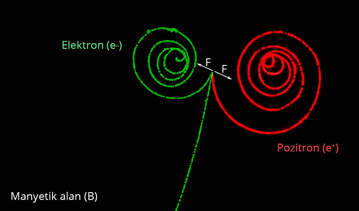 pozitron elektron