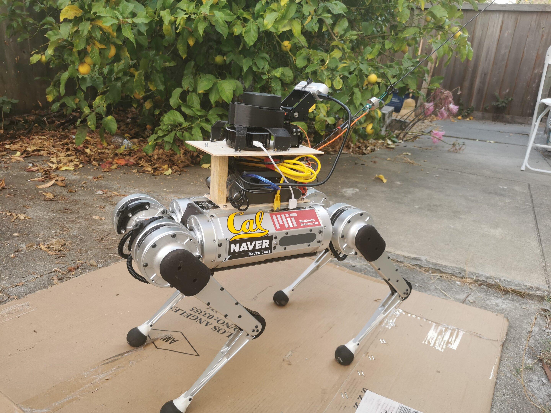 Görme engellilere yardım eden robot rehber köpekler