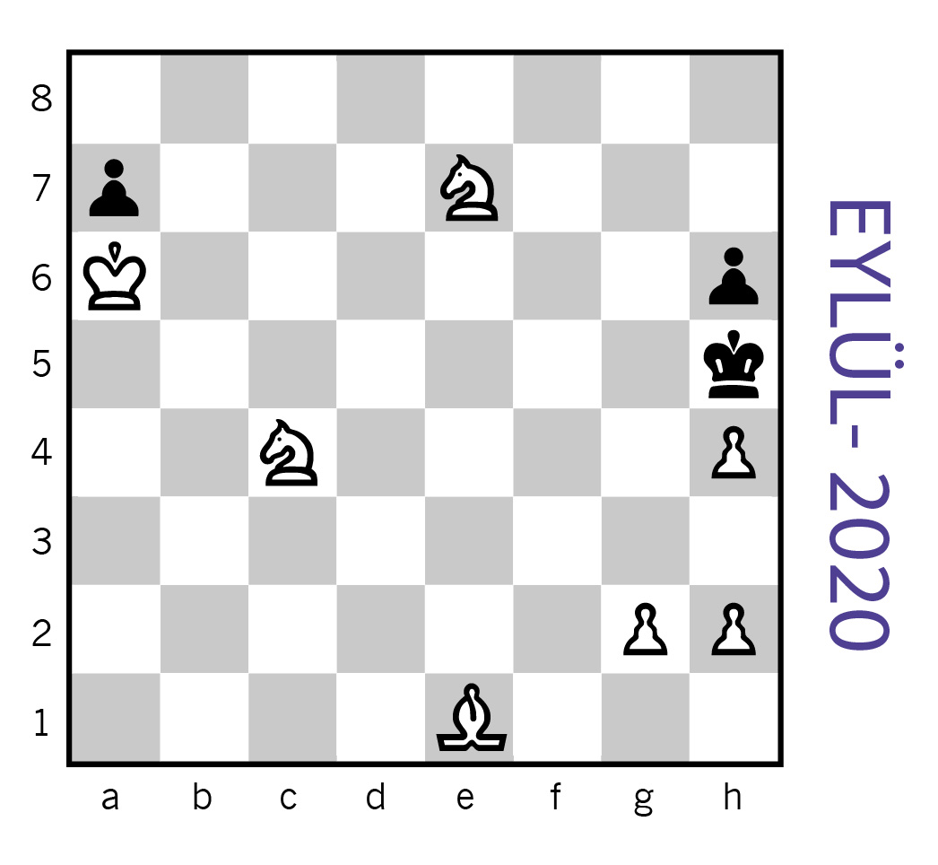 bilim genç satranç