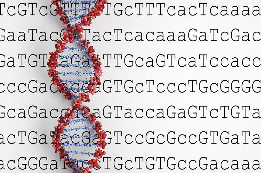 gen kodlaması ile ilgili görsel sonucu