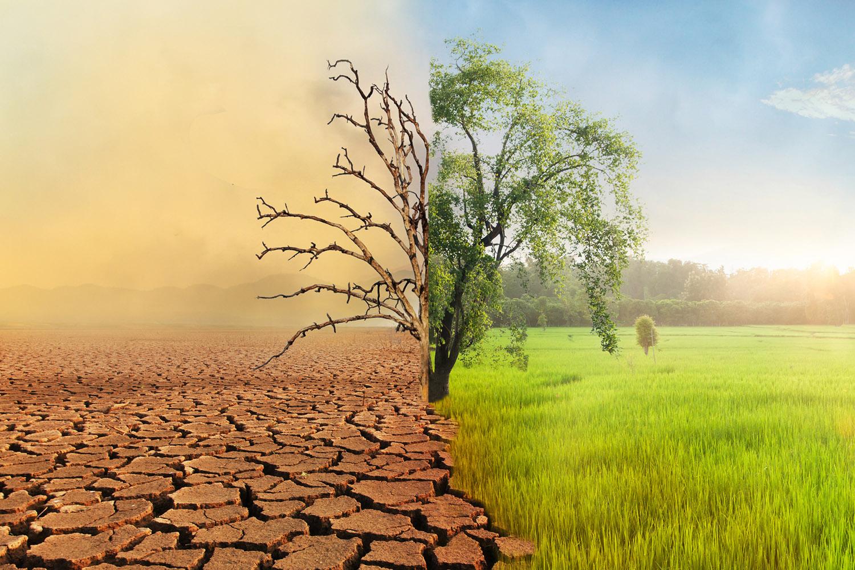 Gelecekteki Tehlike: Su Kıtlığı   TÜBİTAK Bilim Genç