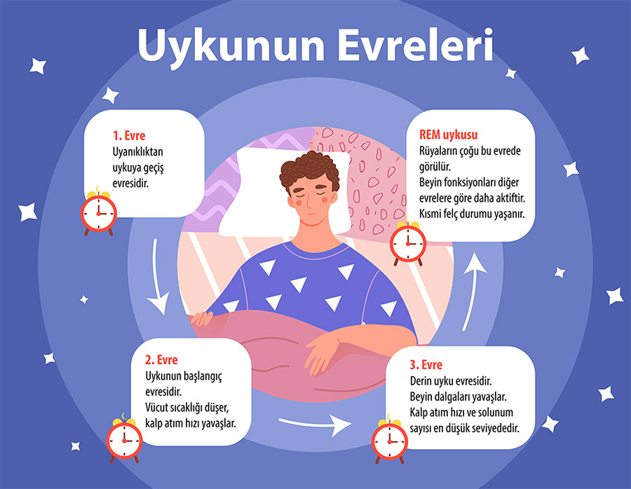 uykunun evreleri ve süreleri